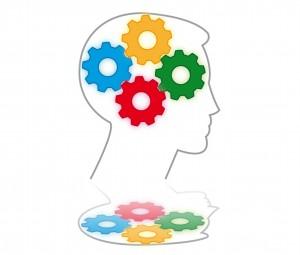 Samspil i hjernen
